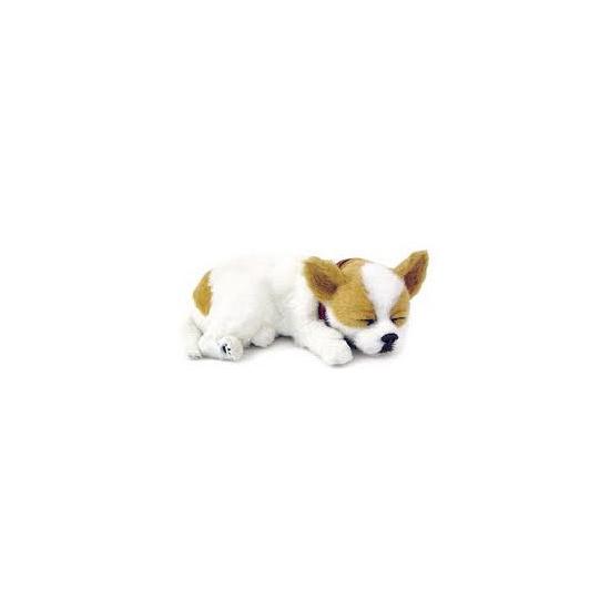 Ademende knuffel hond Chihuahua