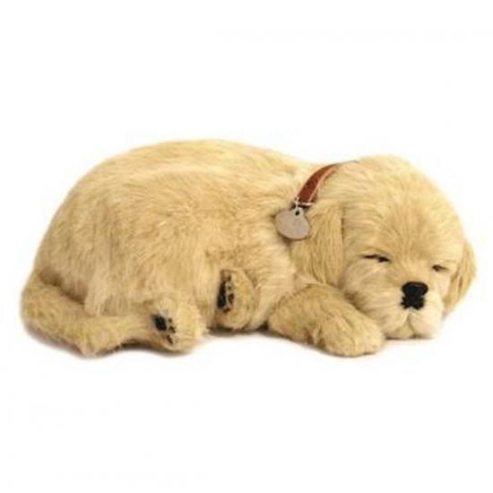 Ademende knuffel hond Golden Retriever