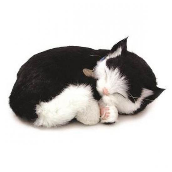 Ademende knuffel kat