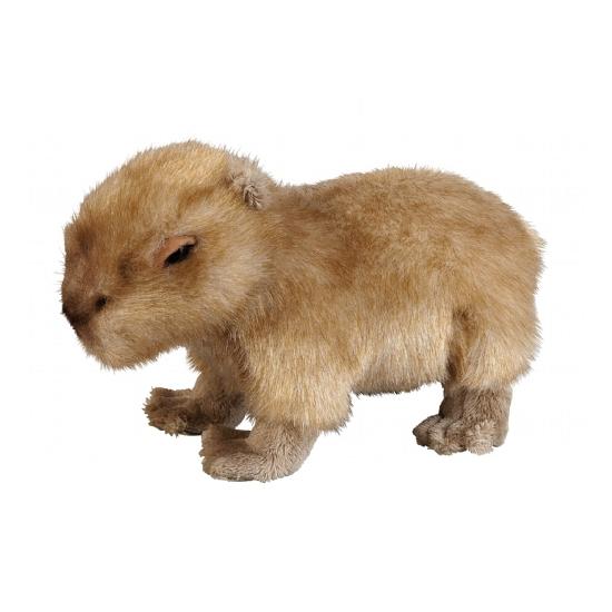 Capibara knuffel 25 cm
