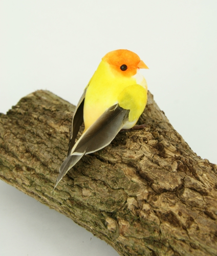 Decoratie vogel op pin 9 cm kopen