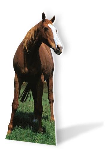 Decoratieborden paard 190 cm