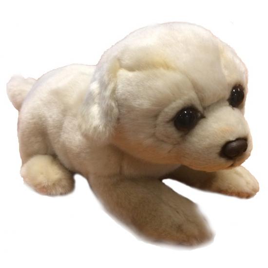 Golden Retriever hond knuffeldier