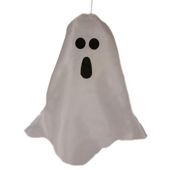 Halloween spook met LED licht