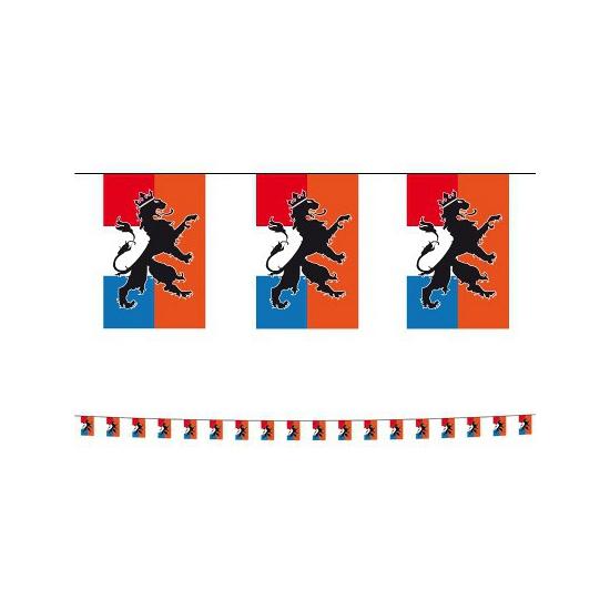 Holland vlaggenlijnen 10 m