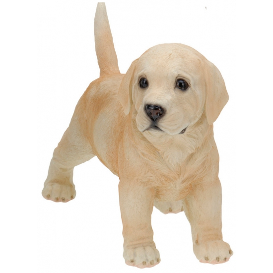 Honden beeldjes staande Labrador 29 cm