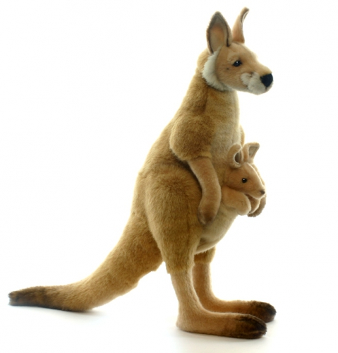 Kangaroe knuffels 43 cm