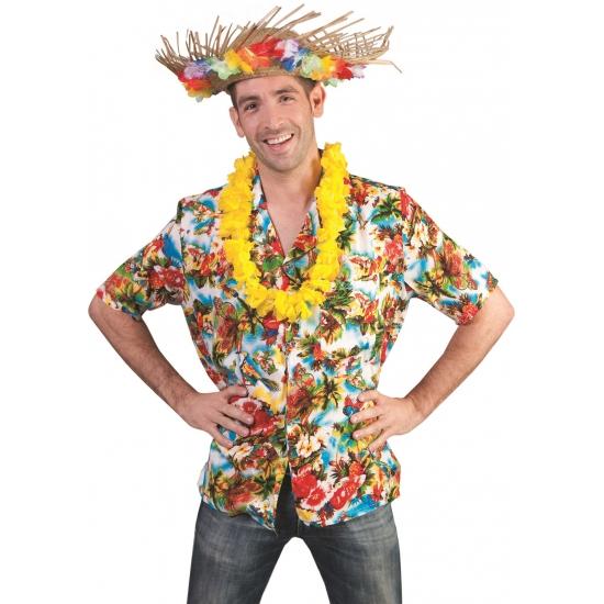 Leuk Hawaii overhemd voor heren