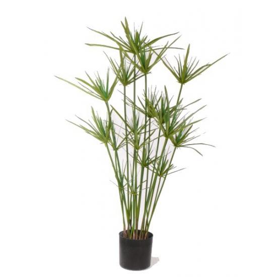 Nep plant papyrus 90 cm