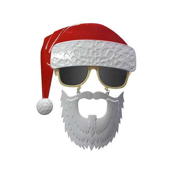 Party bril baard met kerstmuts