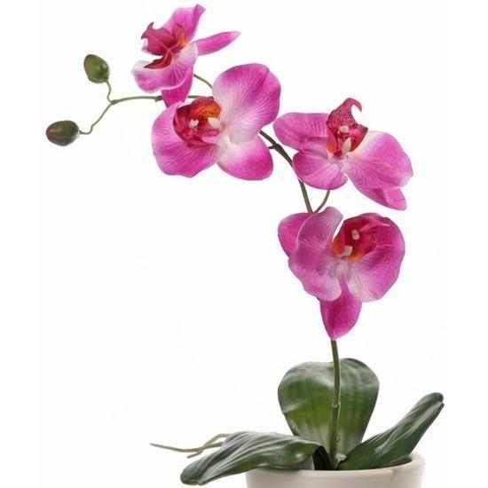 Phalaenopsis kunstplanten roze