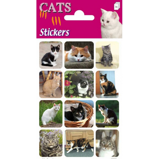 Poezen stickers 3 velletjes
