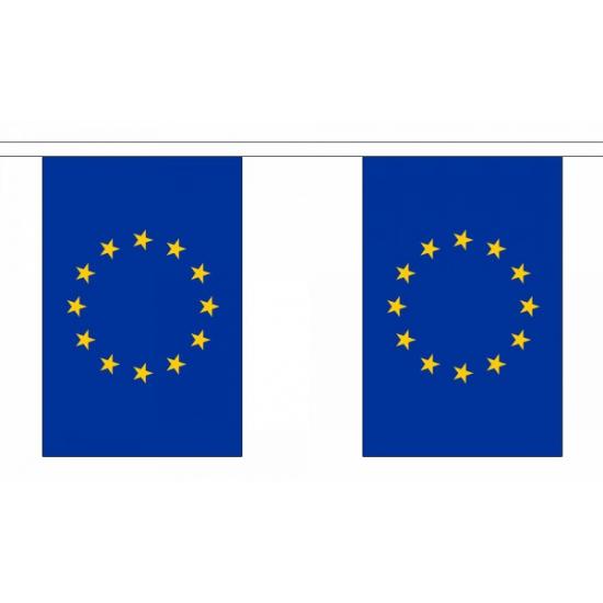 Rechthoekige EU vlaggenlijn