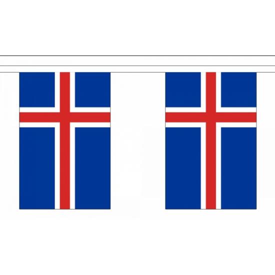 Rechthoekige Ijsland vlaggenlijn 9 meter