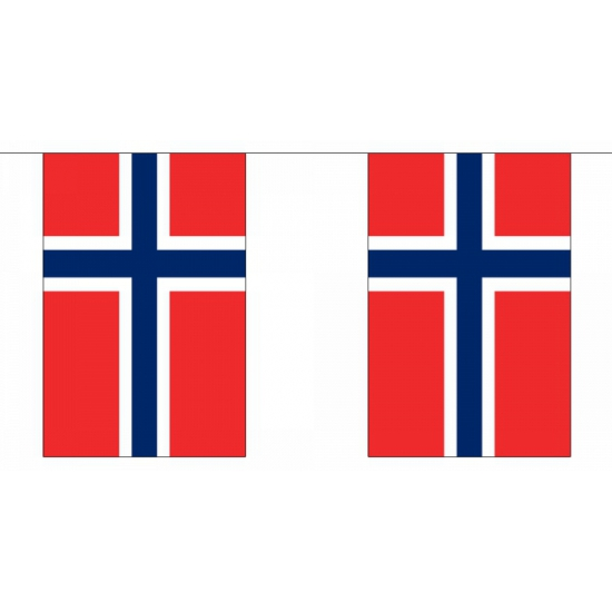 Rechthoekige Noorwegen vlaggenlijn