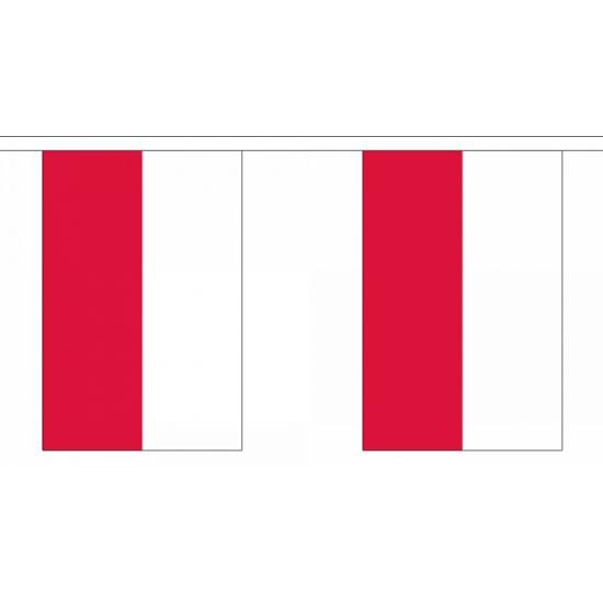 Rechthoekige Polen vlaggenlijn