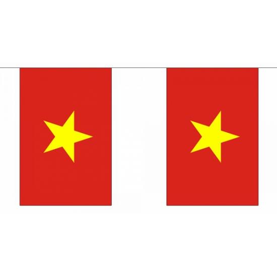Rechthoekige vlaggenlijn Vietnam 9 m