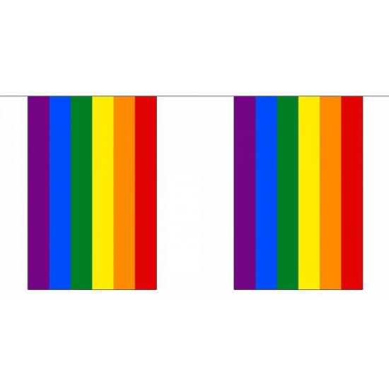 Regenbogen vlaggenlijn 9 m