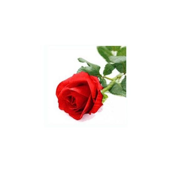 Romantische servetten met roos