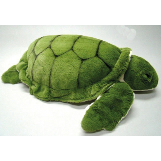 Schildpad knuffeldieren 64 cm