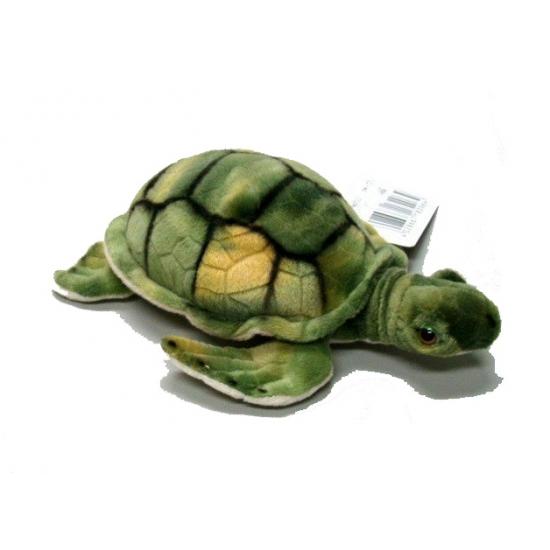 Schildpadden knuffels groen 18 cm