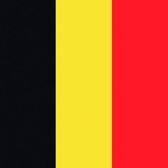 Servetten Belgische vlag 20 stuks
