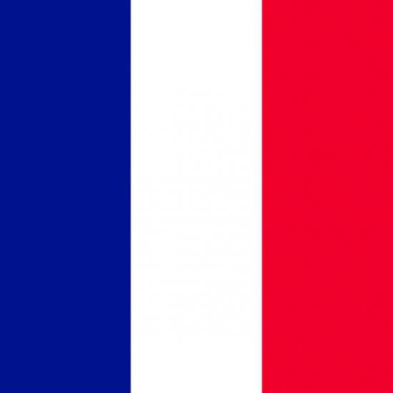 Servetten met de Franse vlag 20 stuks