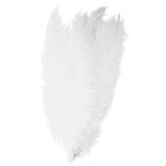 Witte grote sier veertjes 50 cm