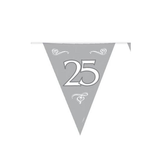 Zilveren 25 jaar vlaggenlijnen